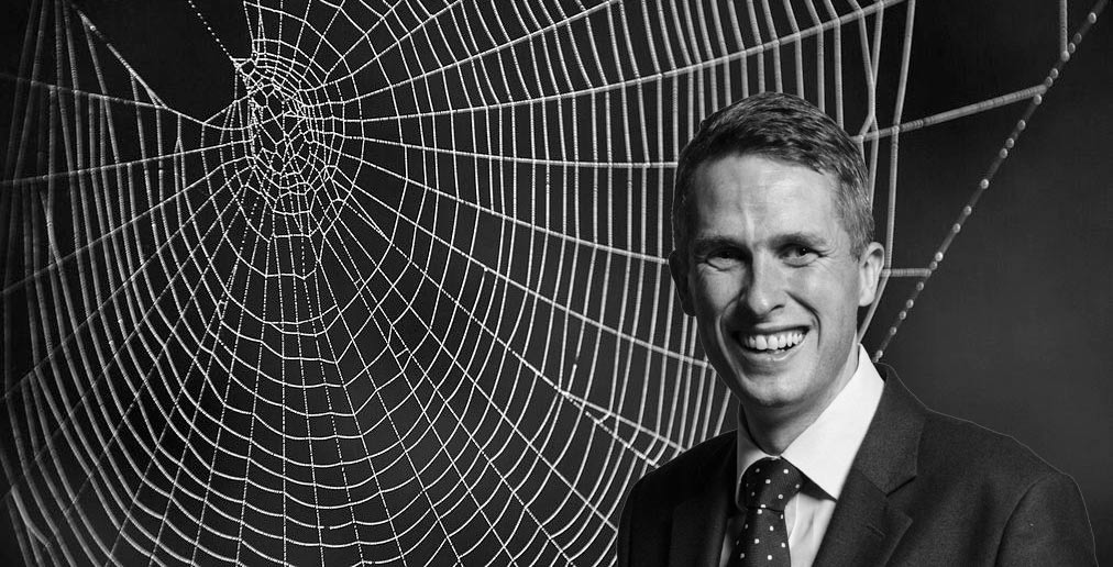 Gavin Williamson Becomes Defence Secretary, Immediately Recruits Spider Army