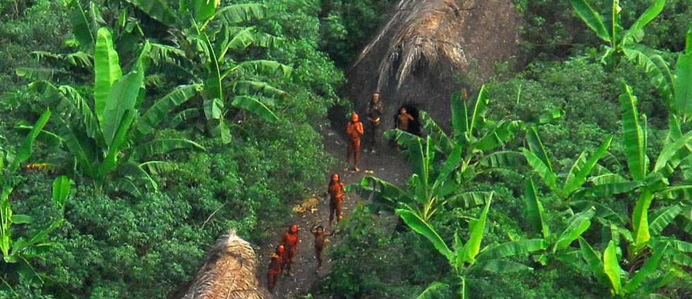 Remote Amazon tribe starts fundraiser to save Kinver Edge trees